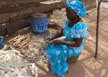 Cassava peeling Greenwich case study image