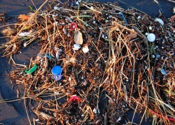 credit plastic ocean by Kevin Krejci