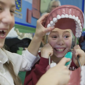 A group of dental students are visiting Ford Primary School to demonstrate oral hygiene to the pupils.